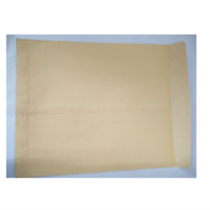 BROWN ENVELOPE 10x8 (KRAFT)