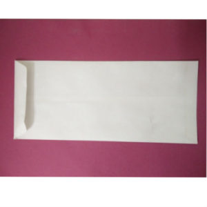 ENVELOPE 10X4 WHITE (SM)