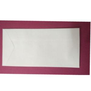 WHITE ENVELOPE 11x5