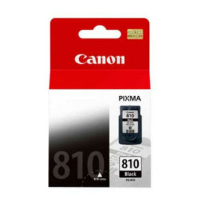 CANON INK CARTRIDGE PG-810 ASA B-W
