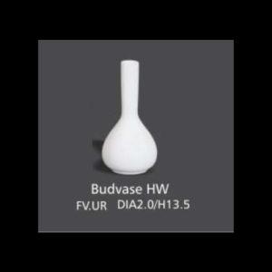 BUDVASE HW